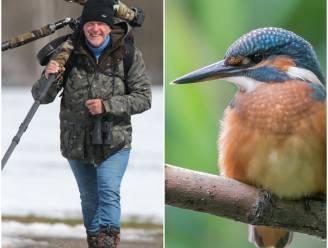 """Francis Pattyn (65) zette al 300 van de 460 vogels in België op foto: """"En de meeste spot ik gewoon in de Gavers"""""""