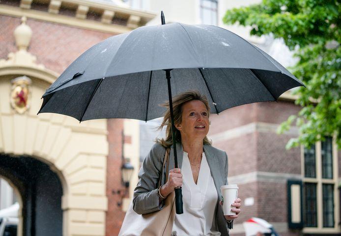 Minister Kajsa van Ollongren (Binnenlandse Zaken) wil niet dat de baatbelasting wordt gebruikt voor het terugbetalen van duurzaamheidsinvesteringen.