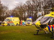 Meisje (17) en hond geschept door auto in Eindhoven