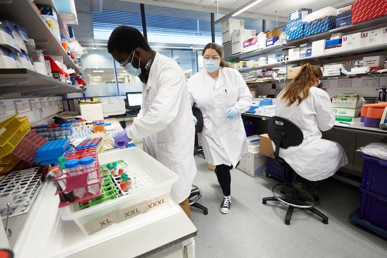 Het laboratorium van het Jenner Institute waar het vaccin van AstraZeneca Vaccine wordt ontwikkeld.  Beeld Hollandse Hoogte / The Guardian & The Observer