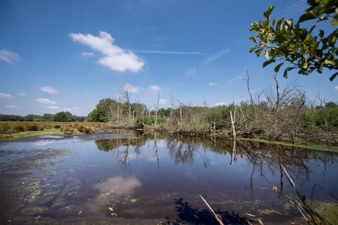 Tot en met voorjaar 2021 wordt er gewerkt aan het herstellen van de verbinding tussen de Sallandse Heuvelrug en de Zunasche Heide.