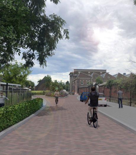 Bewoners Lange Nieuwstraat willen best groen, maar er moeten ook parkeerplaatsen overblijven