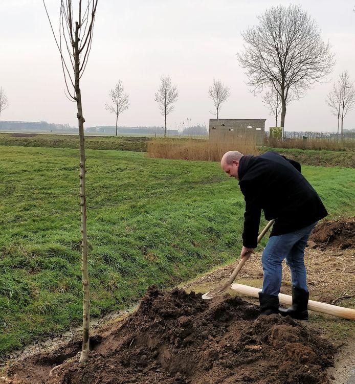 De eerste officiële boom is door wethouder Erik van Hoften geplant aan de Vamerenweg bij Ammerzoden.