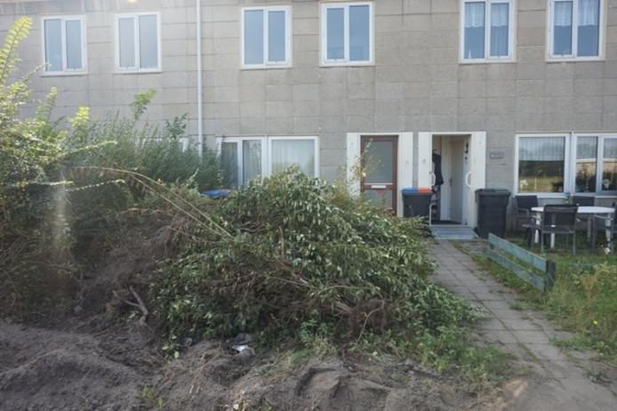 Omgewoelde tuinen Twentestraat