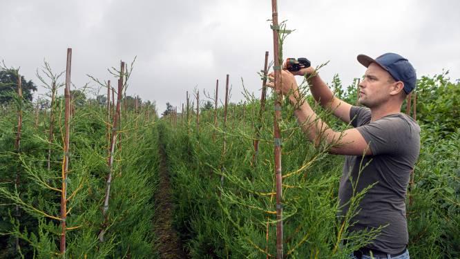 Met een eigen boomkwekerij komt Jannick zijn jongensdroom uit