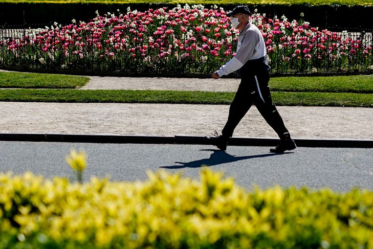 Een man wandelt in een Brussels park. Foto ter illustratie. Beeld AFP