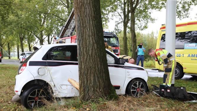 Auto raakt van de weg, ramt verkeerspaal en klapt tegen boom, bestuurster zwaargewond