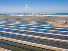 Zagers in de schaduw, bedrijven krijgen groene stroom: raad wil faire kans voor zonnepanelenproject