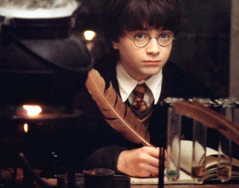 Harry Potter Beeld