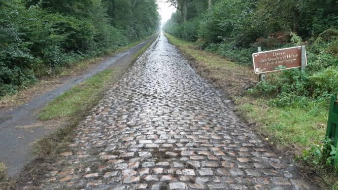 Klaar voor Parijs-Roubaix: kasseien Bos van Wallers onkruidvrij gemaakt