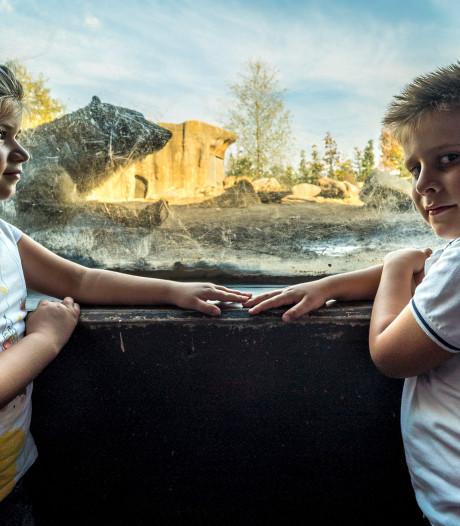 Sizzel (7) en Todz (6) uit Rockanje nemen afscheid van 'hun' ijsberentweeling