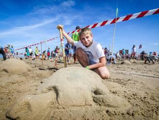 396 zandschildpadden leveren wereldrecord op