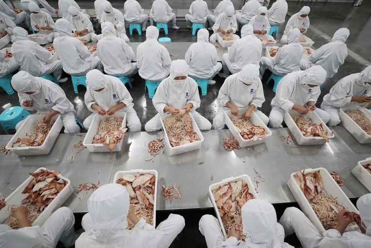 Fabriekswerkers sorteren gedroogde zeevruchten en vis in een fabriek in Lianyungang, China. Beeld AFP