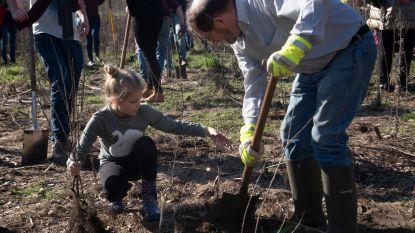 Natuurpunt en Rotary breiden Hutsepotbos Zwijnaarde uit tot 25 hectaren