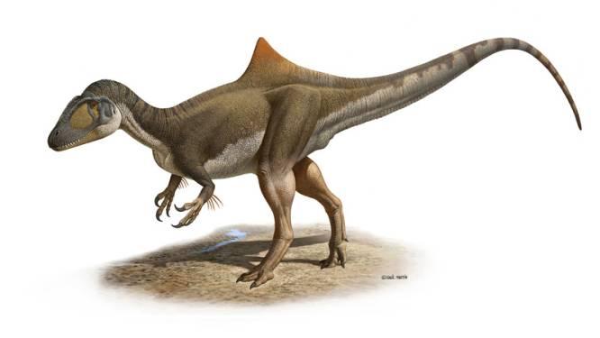 Nieuwe soort dinosaurus ontdekt in Spanje