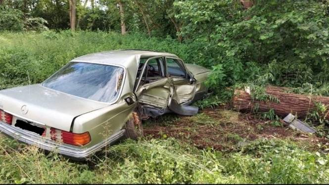 Politie klist twee mannen na achtervolging, die eindigt met crash tegen boom