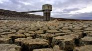 """Watervoorraad Sydney daalt aan recordtempo door droogte: """"Steden in binnenland kunnen binnen 12 maanden zonder water vallen"""""""