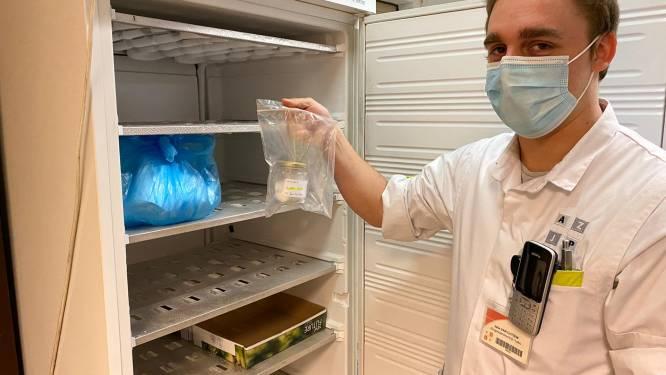 Speurhonden worden getraind om COVID-19 te herkennen... met watjes vol zweet van patiënten uit AZJP Vilvoorde