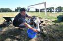 Boert Martin met zijn koe, die het niet gehaald heeft.
