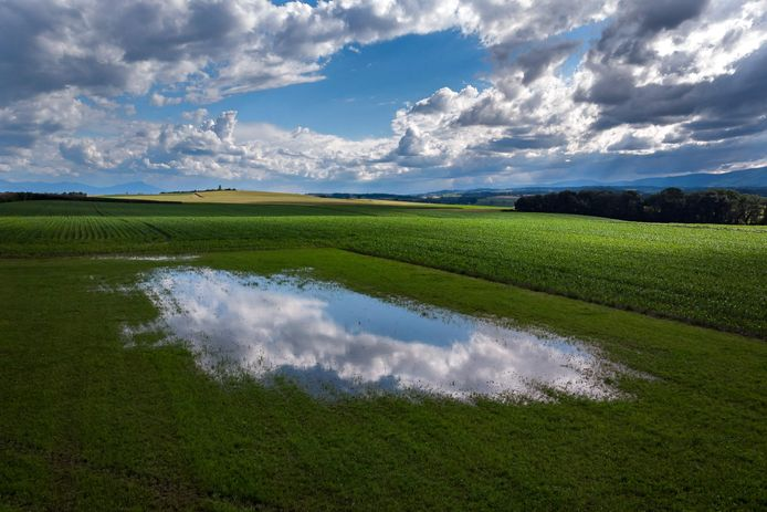 De wolken weerspiegelen in plas in een deels ondergelopen weiland in het Zwitserse Daillens.