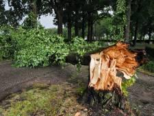 Onweer trekt over Brabant, veel schademeldingen in omgeving van Oirschot en De Beerzen