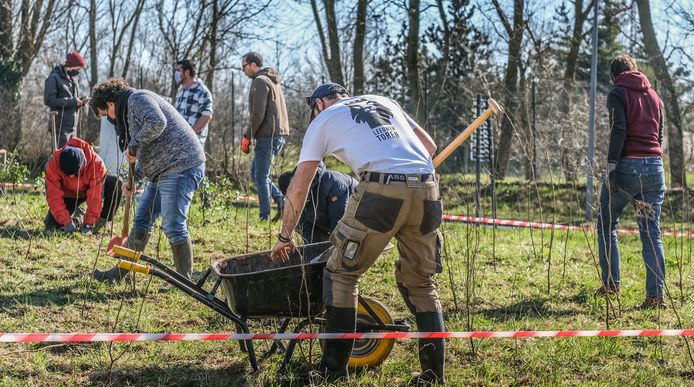 Ieper doet heel wat inspanningen voor het milieu: er vinden heel regelmatig aanplantingen van bomen plaats.