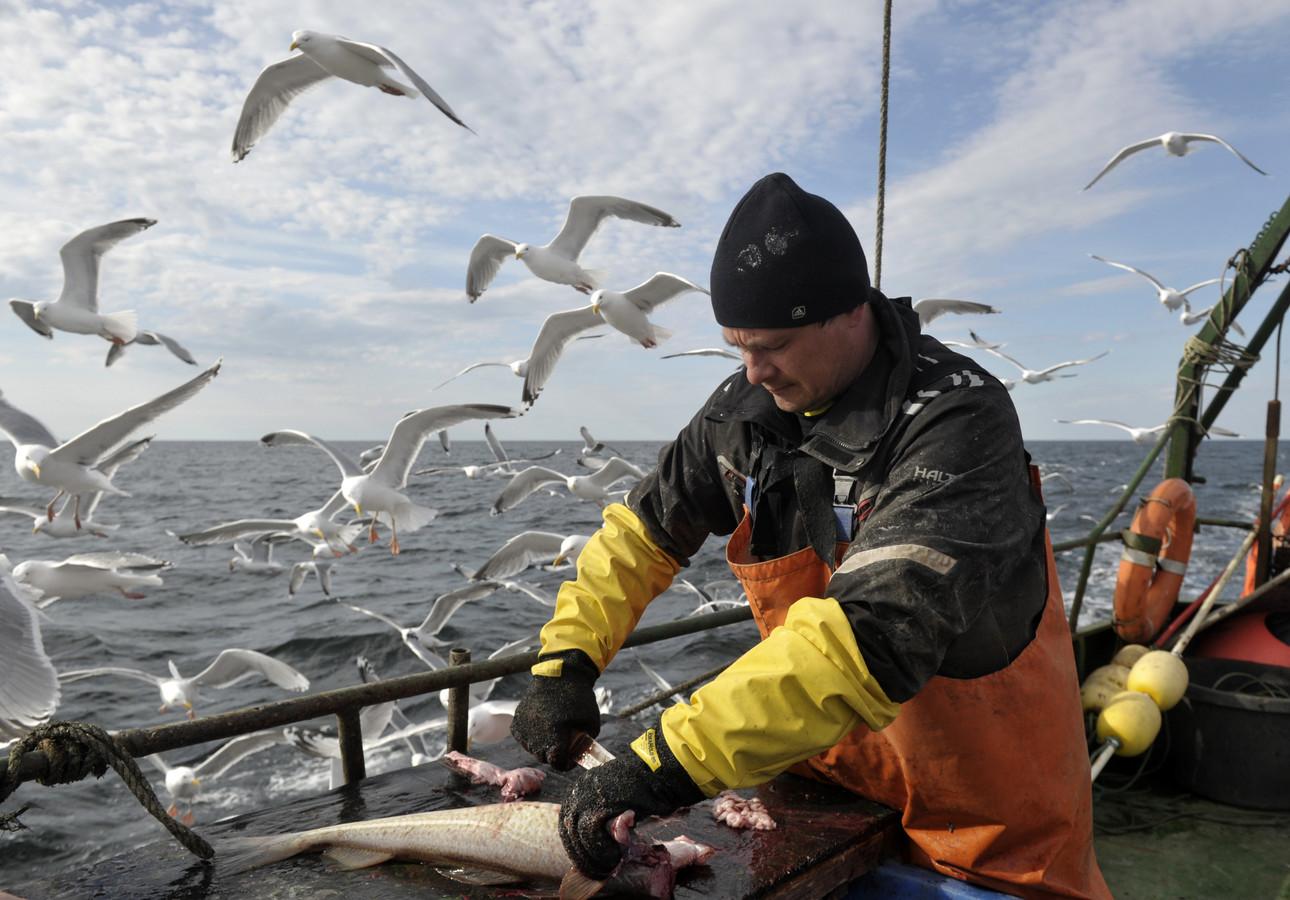 Europese vissers maken zich grote zorgen over de Noorse maatregelen