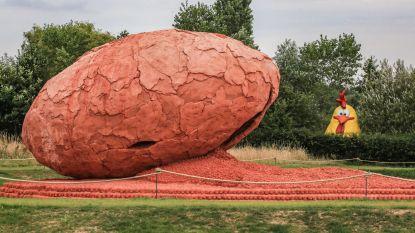 Hilarisch: buurman plaatst reuzenkip naast gigantisch ei in provinciaal domein