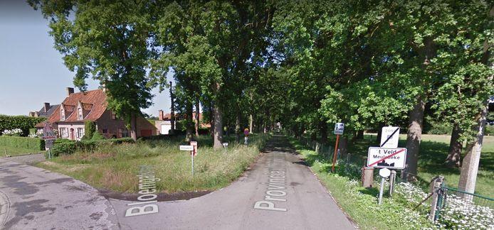 Aan provinciaal domein 't Veld in Ardooie zijn sluikstorters aan de slag geweest.