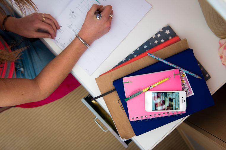 Archiefbeeld - Een meisje maakt huiswerk.