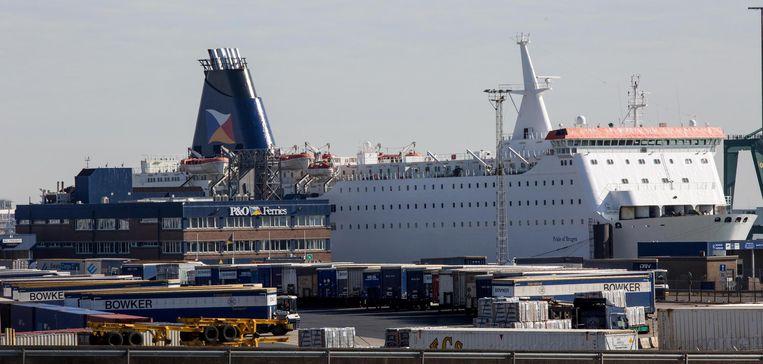 De Pride of Bruges, een van de twee zusterschepen van P&O, in de haven van Zeebrugge. De cruiseferry is nu geschrapt. Beeld Benny Proot