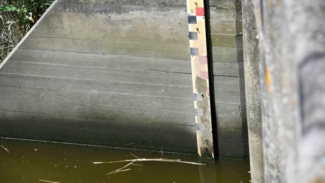 Hevige regenval heeft geen invloed op grondwaterpeil
