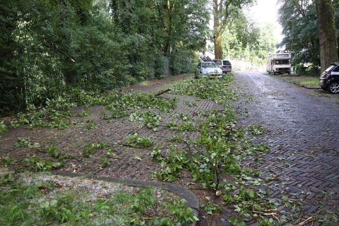 Afgebroken takken in de omgeving van de Roemer Visscherstraat in Arnhem.