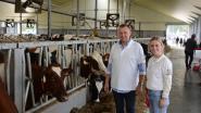 Hollebeekhoeve neemt nieuwe zuivelfabriek in gebruik en legt haar koeien in de watten