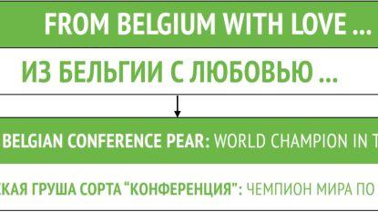 Kijk tijdens match België-Rusland ook eens naast het veld