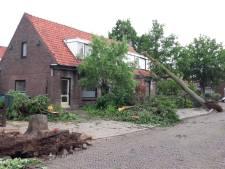 Tornado laat spoor van vernieling achter in Rheden en op de Veluwe