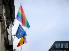 Le 16 rue de la Loi se pare des couleurs arc-en-ciel pour la journée contre l'homophobie