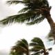 Harvey en Irma: dít is hoe orkanen en stormen aan hun namen komen