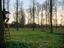 Jager edelherten: 'Het moet in één keer raak zijn'