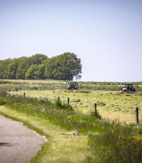 Reekalfje dood door maaimachine in Tubbergen, kalfjes gered in Vriezenveen: roep om maatregelen groeit