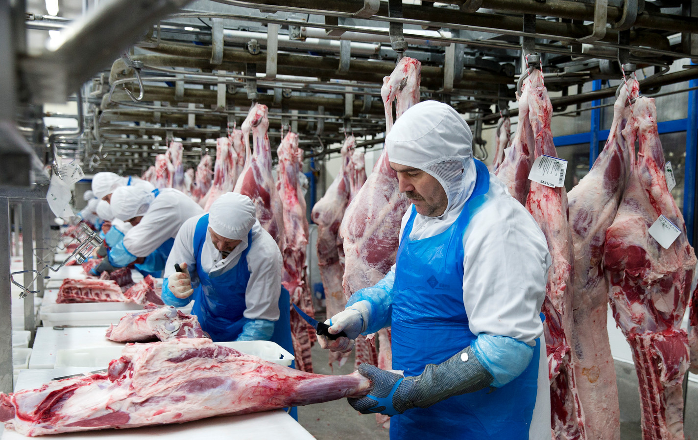 FNV en CNV willen dat medewerkers in de vleesindustrie zo snel mogelijk een vast contract krijgen, net zoals in Duitsland.