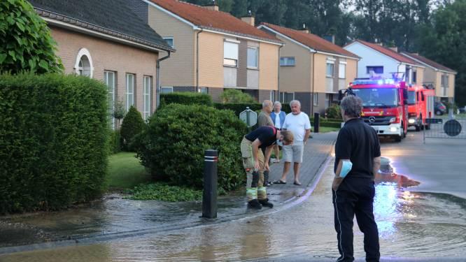 Hele wijk zonder water na breuk in waterleiding