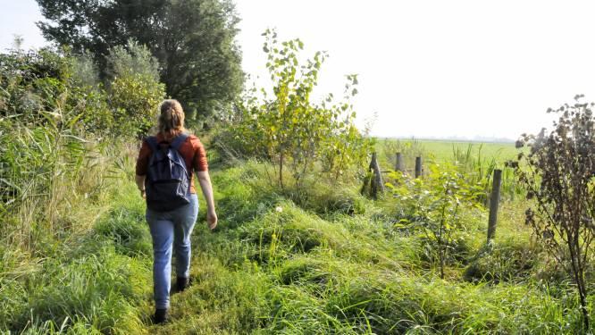 Deze wandeling gaat langs een uitstervend fenomeen: de laatste eendenkooien van Nederland