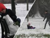 Twente kleurt wit: mooie taferelen en sneeuwpret in het park!