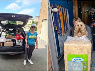 Leuvense dierenvereniging zamelt eten en materiaal in voor dieren in nood na overstromingen