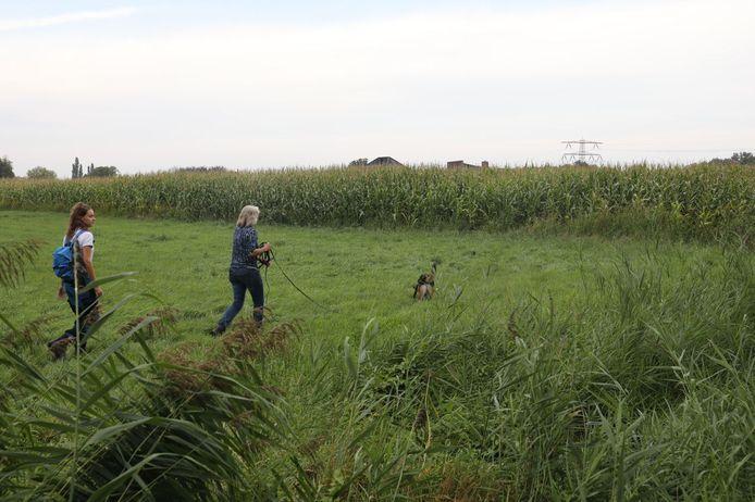 Op het terrein van GGNet in Apeldoorn is vanmiddag intensief gezocht met 5 reddingshonden.