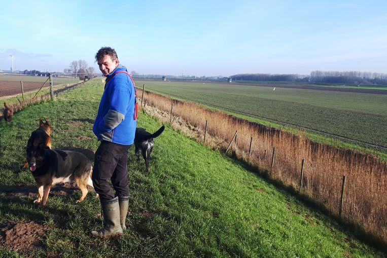 Leo van der Feest laat honden uit op de dijk in de Hoeksche Waard. Beeld Emiel Hakkenes