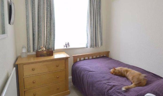 De kat van Michael Hubank, doodleuk op het bed bij de buren.