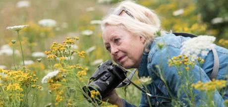 Hengelose fotografe Maria van Essen wil niks missen van de belevenissen van de specht in 't Genseler