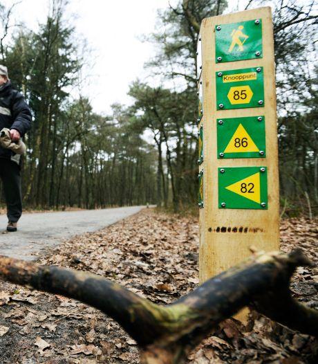 Zo ontdek je de leukste wandelroutes bij jou in de buurt